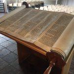 Alexander Torah